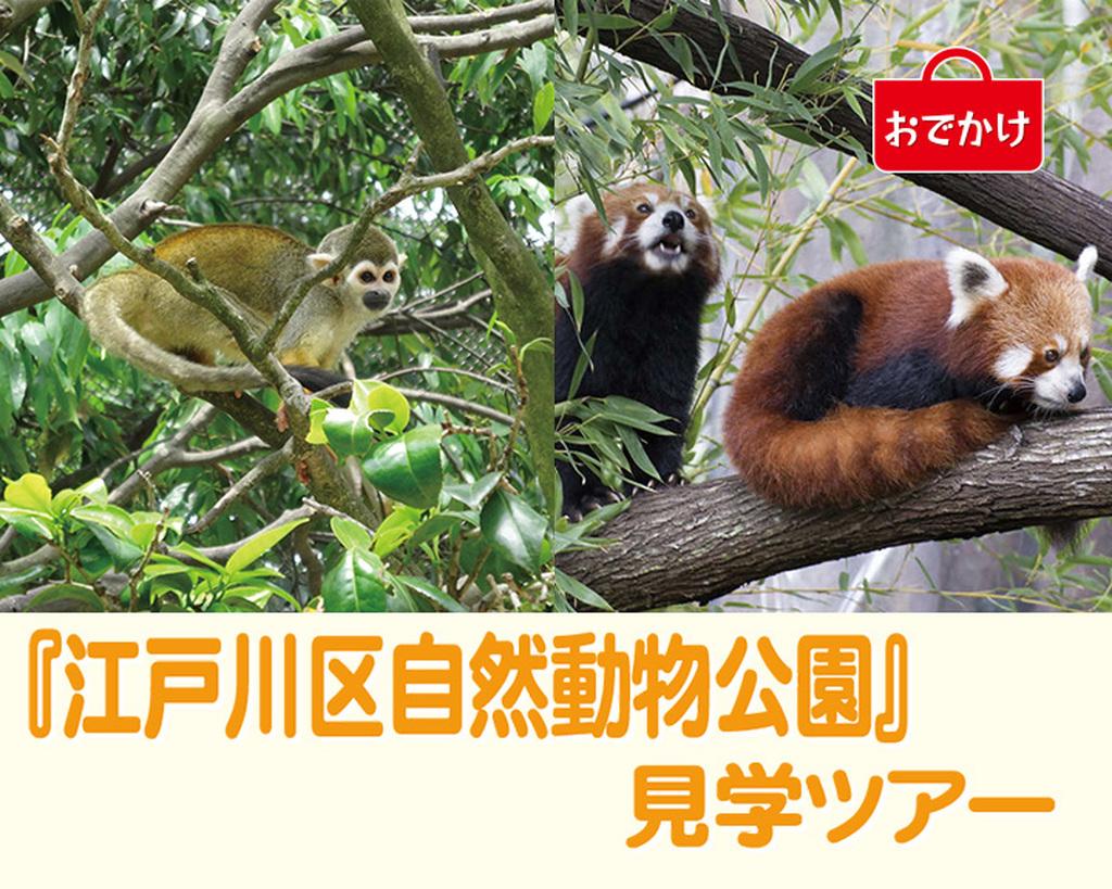 『江戸川区自然動物公園』見学ツアー