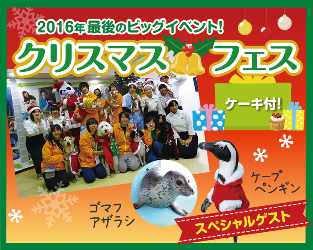 2016年最後のビッグイベント!「クリスマスフェス」12/18(日)に開催!