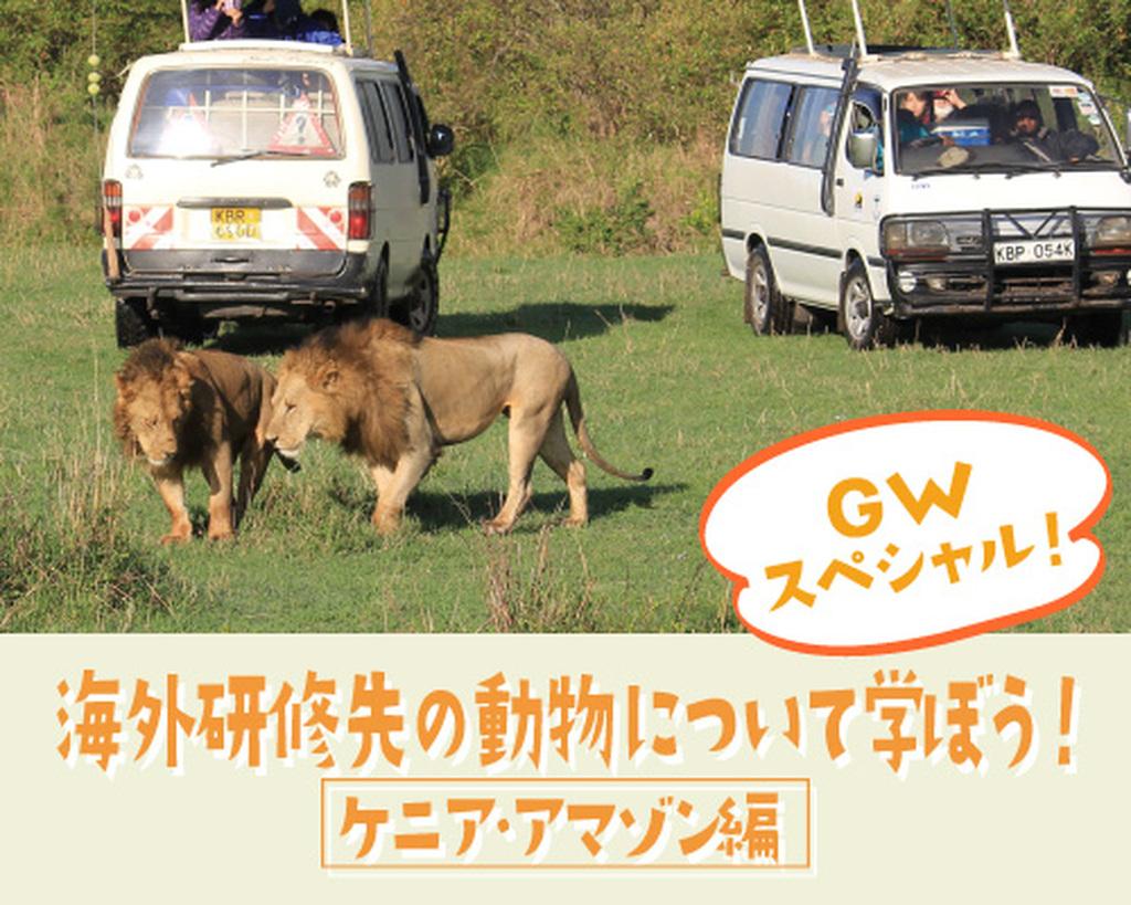 11/23(水・祝)TCAにオーストラリア産の動物たちが大集合!「ワールドフェス【オーストラリア編】」開催!!
